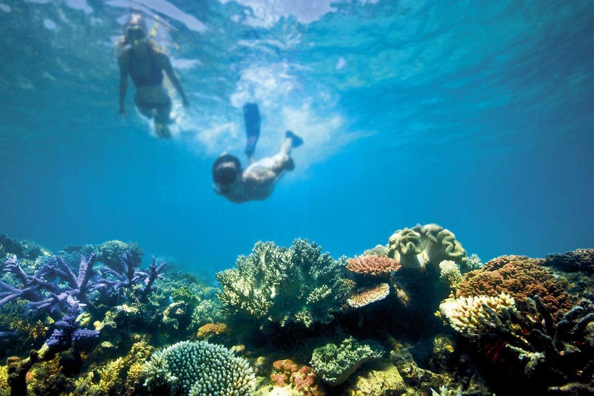 viajes que debes hacer - gran barrera de coral